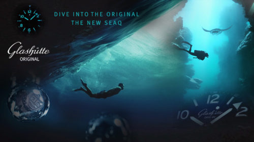 go-seaq-dive-into-the-original-1